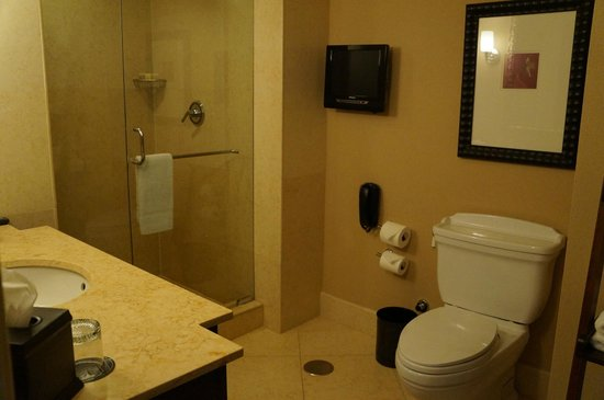 Wyndham Grand Chicago Riverfront: Rm. 1408 Bathroom - Leaky Shower Door