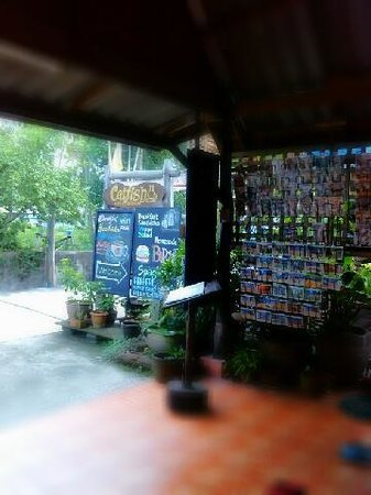 Catfish Bookshop & Restaurant : หน้าร้าน