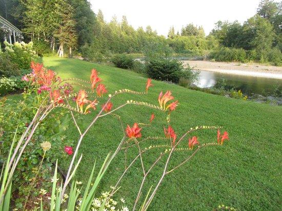 Quillayute River Resort: Grounds