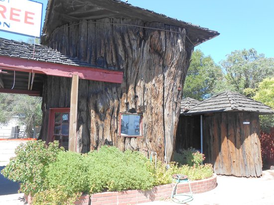 """World""""s Largest Redwood Tree Service Station : Station and two bathrooms"""