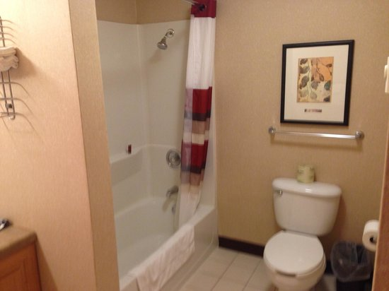Red Roof Inn Sioux Falls: Bathroom 3