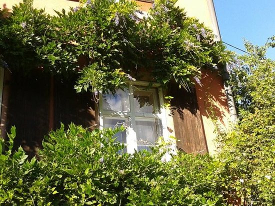 La Maison des Roses : window from the outside
