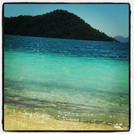 D- Resort Gocek: Plajın manzarası