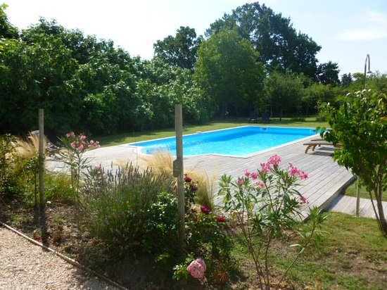 Au Coin des Figuiers: Swimming Pool