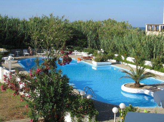 Hotel Albatros: Poolside