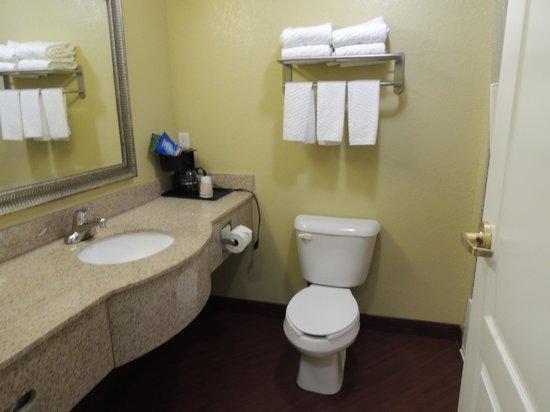La Quinta Inn & Suites Bowling Green : Bathroom area.