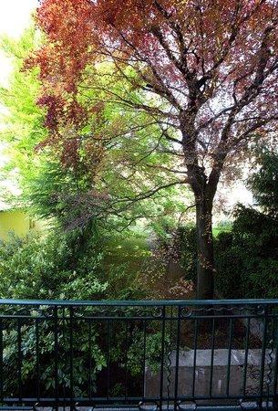 Victoria Hotel: Garden view