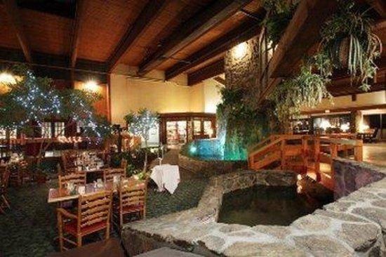 Fireside Inn & Suites: Garden Court Restaurant