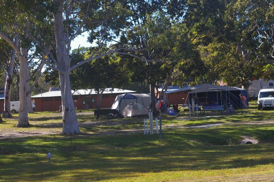 Noosa North Shore Retreat: the camping ground has lots of lovely trees for shade
