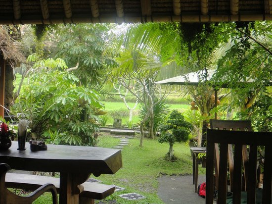 Yeh Pulu Cafe : View from the restaurant