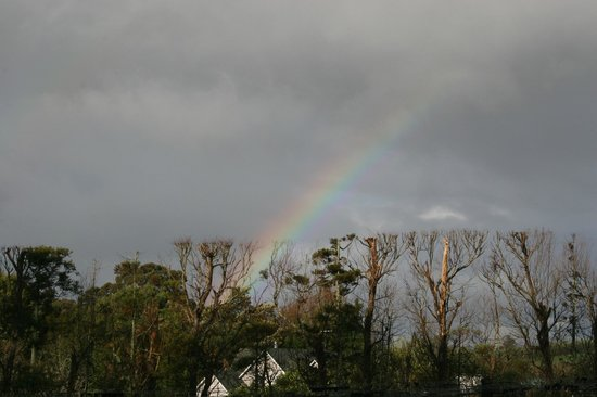 Matakana Country Lodge : The end of the rainbow does not mean gold