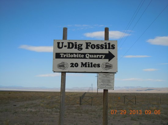 U-Dig Fossils: Signs along the way...