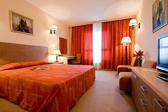 Vitosha Park Hotel : Double Room