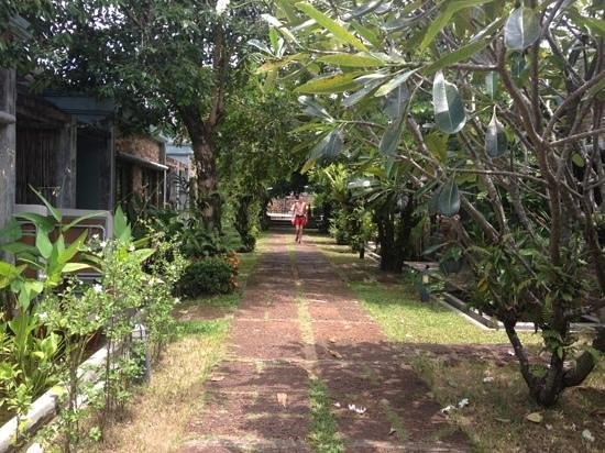 Samui Heritage Resort : parties communes