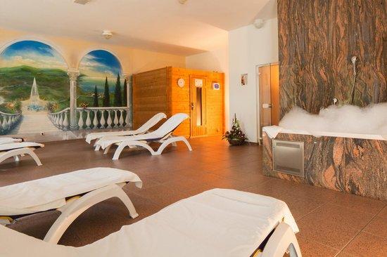 Hotel Heidehof: Wellness-Bereich