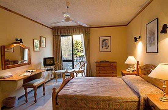 Cornucopia Hotel: Standard Double Room