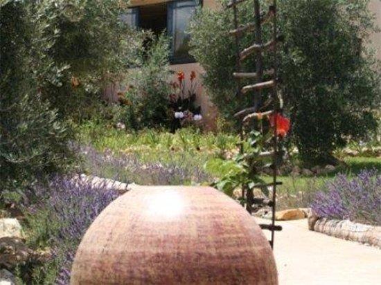 Olive Garden Country Lodge Robertson Sydafrika