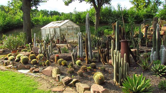 Gartenschau Kaiserslautern: Cactus patch (more impressive here then my home in Texas)