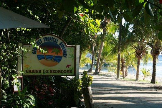 In front of Georphi's Tropical Hideaway