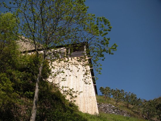 Hamamatsu Akino Fuku Museum : 入り口から見上げた美術館