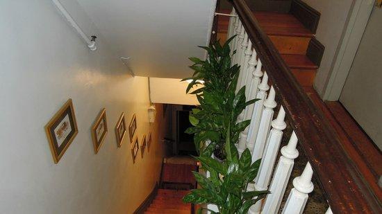 Ivy Terrace : Treppenhaus