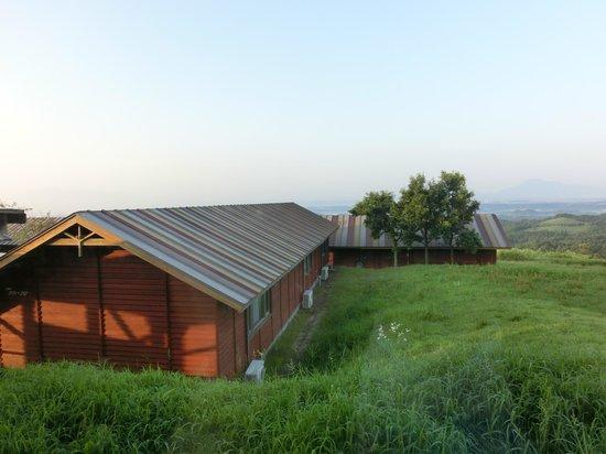 Kuju Kogen Cottage: 部屋の前の景色