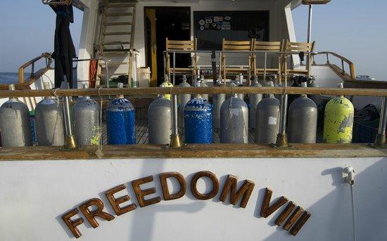 Sharks Bay Umbi Diving Village: FREEDOM VIII