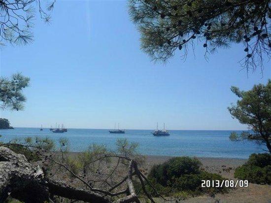 Pirate's Beach Club: 2013-08