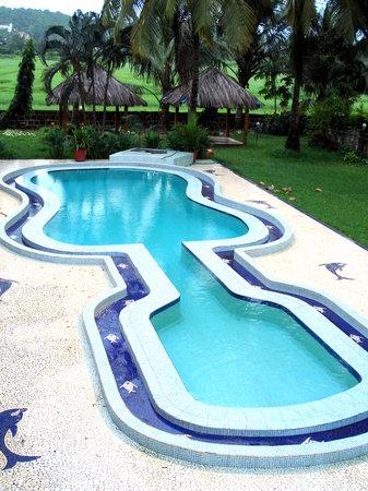 Guitar Shaped Pool Picture Of Lua Nova Hotel Calangute Tripadvisor