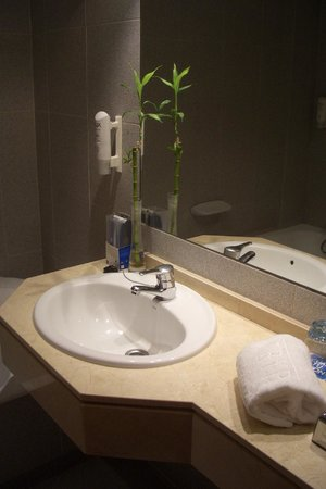 Tryp Palma Bosque Hotel: Una foto del lavandino...