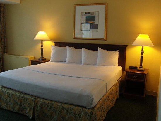 LaGuardia Airport Hotel: SIG Guest Room King - Property - 01/11