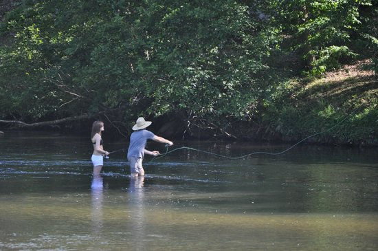 Fishing 100 ft from your cabin picture of hiwassee for Murphy s hook house fishing report