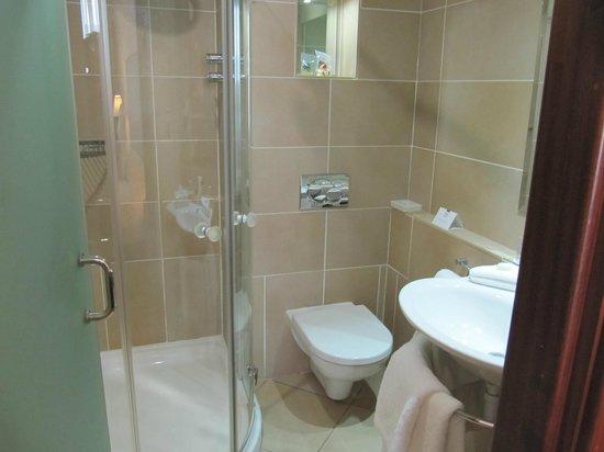 Europa Hotel - Belfast: Modern Shower