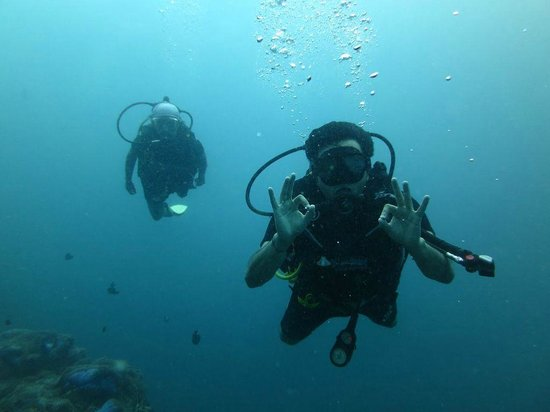 Discovery Dive Centre: Sail Rock!
