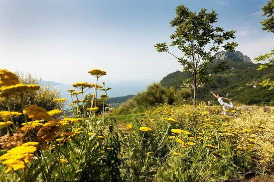 Lefay Resort & Spa Lago di Garda: Energy and Therapeutic Garden
