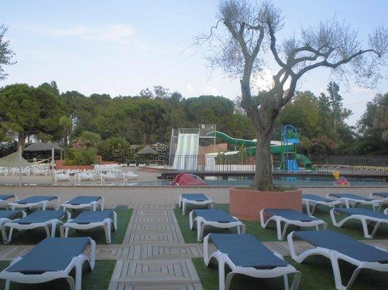 Piscine picture of camping le soleil argeles sur mer for Camping cavalaire sur mer avec piscine