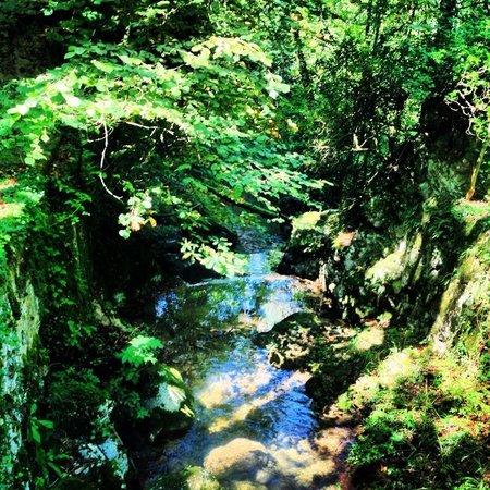 La Cova del Santuari de la Mare de Deu de Lourdes