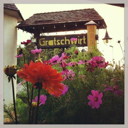 Hotel Gratschwirt: Spazio esterno arrivo