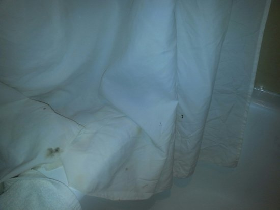 Embassy Suites by Hilton Dallas - Market Center: the bottom of the shower curtain