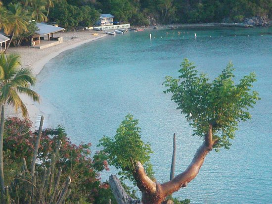 Virgin Islands Campground: The swimming area at Honeymoon Beach