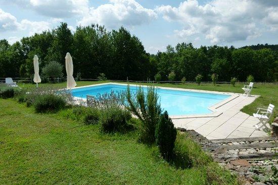 L'Astilbe: La piscine