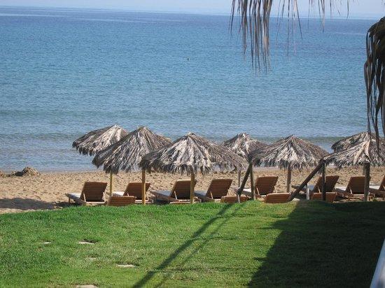 Ammos Hotel: Hotelliegen & Sonnenschirme