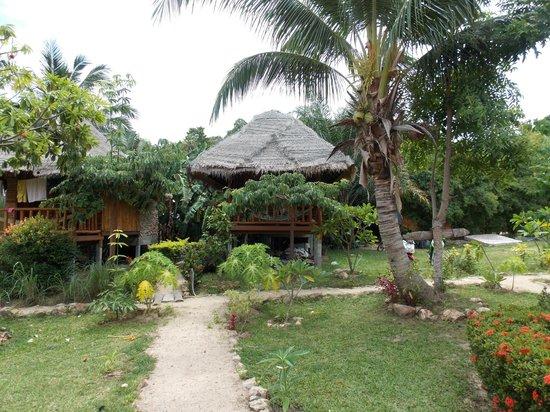 Sea Salad Resort: Bungalows superieur fan