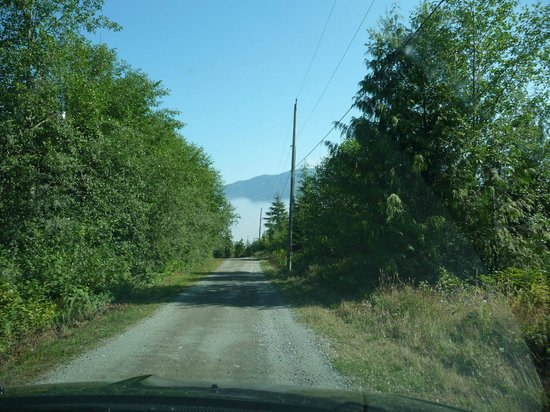Soule Creek Lodge : Powdermain Road - a little steeper than it looks but well gravelled