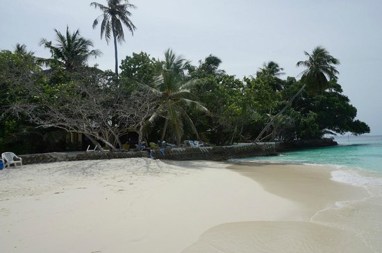 Embudu Village: The beaches warm the heart