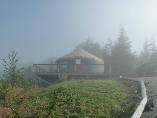 Soule Creek Lodge : Tatoosh Yurt: Sun's up!
