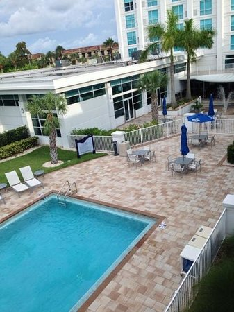 Crowne Plaza Tampa Westshore : pool