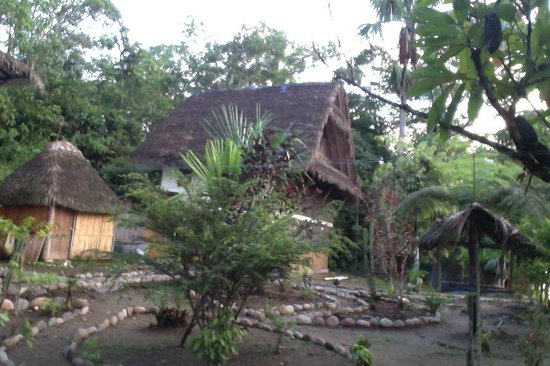 Ecuador Chocolate Lodge : A view of the main 3 floors cabana, one of 3 buildings on the site. Jungle living with comfort.