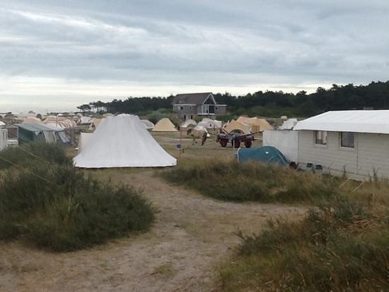 Camping Stortemelk: geen auto's dus wordt bagage met paard en wagen naar de boot gebracht.