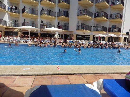 Ola Club Bermudas : Pool